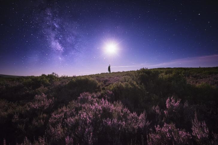 Фото №1 - Цветочная Суперлуна: когда наступит и что принесет самое особенное полнолуние в году