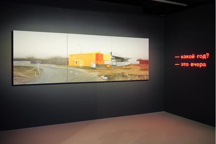 Фото №6 - Выставка номинантов второй московской арт-премии открылась в «Зарядье»