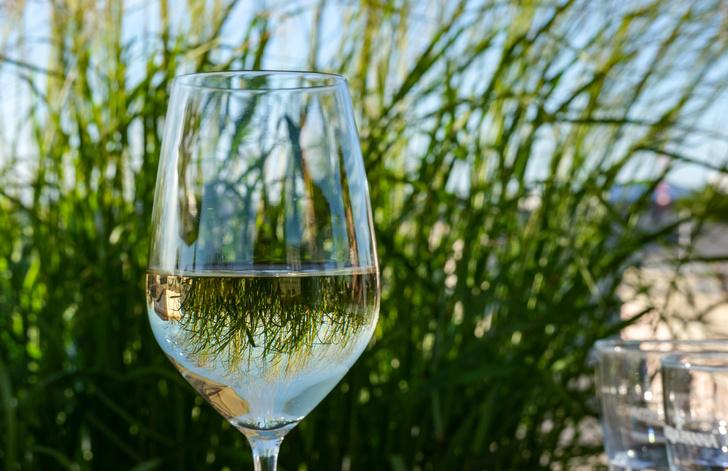 Фото №1 - Употребление алкоголя в любом количестве вредно для мозга