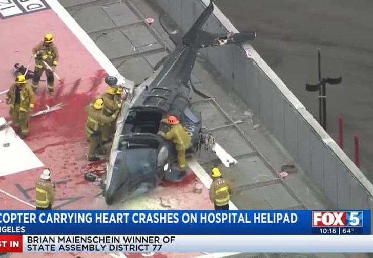 Фото №1 - В США разбился вертолёт с донорским сердцем, но никто не пострадал. Тогда сердце попытались разбить вновь (видео)