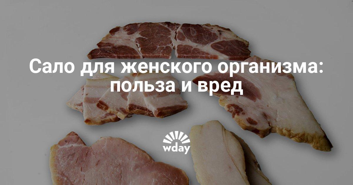 Чем полезно сало свиное для организма женщины