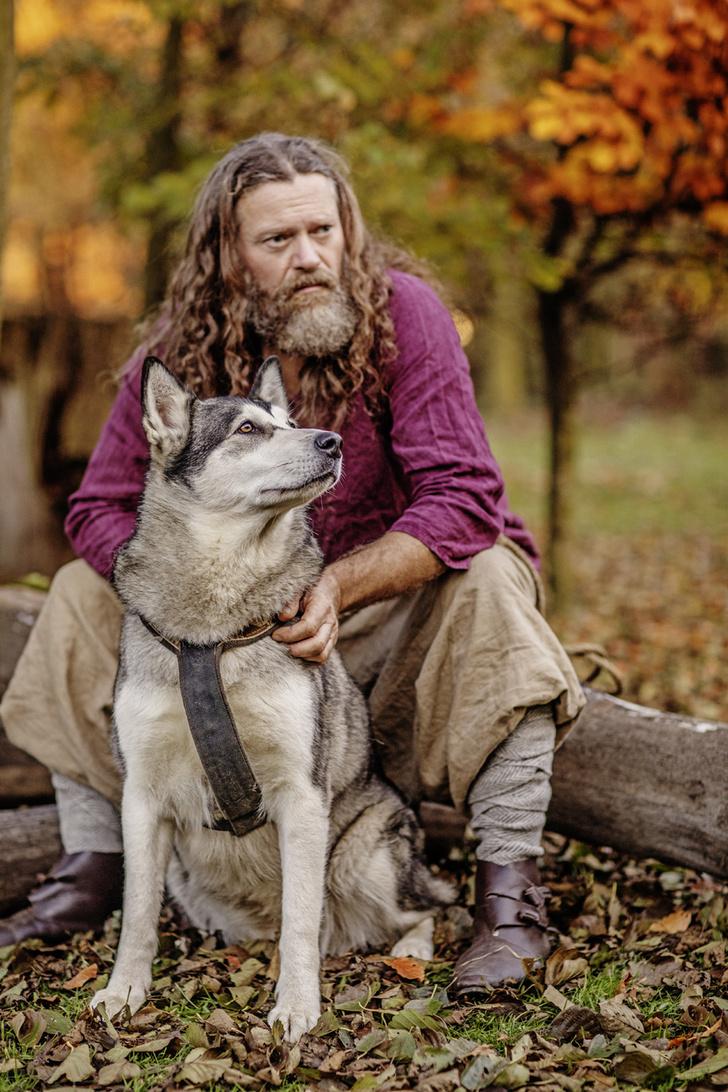 Фото №1 - Как из прирученного волка появилось так много пород собак?