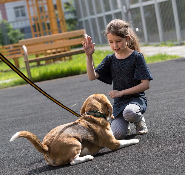 Когда ребенку пора заводить собаку