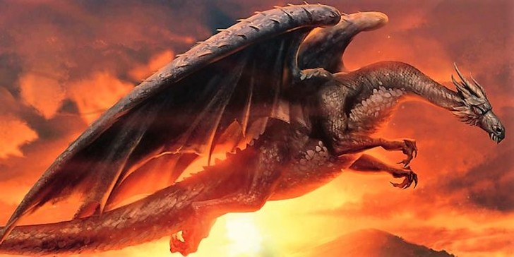 Фото №6 - «Гарри Поттер»: самые интересные и малоизвестные факты про драконов 🐲