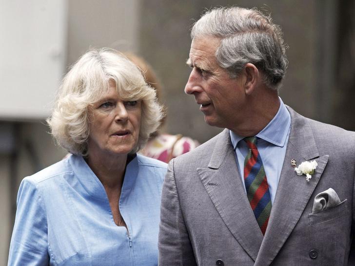 Фото №1 - Главная причина, почему Чарльзу и Камилле стоит уступить престол Кембриджским