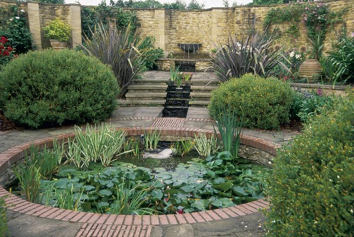 Фото №4 - ТОП-5 вопросов читателей на тему сада