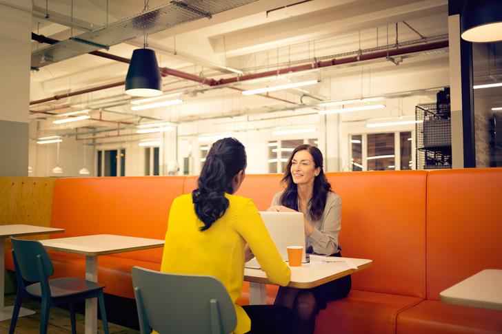Какие профессии можно освоить с нуля: варианты работы, курсы, куда пойти учиться, куда пойти работать, что делать при увольнении