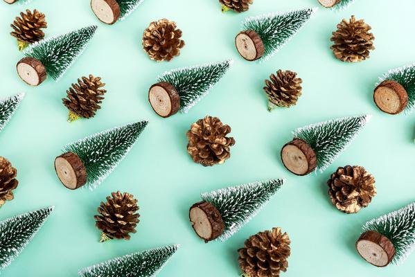 Фото №1 - Тест: Выбери елочку и узнай, что положит под нее Дед Мороз 🎅