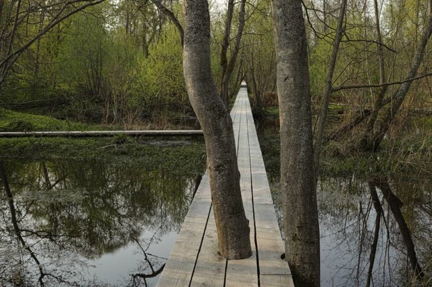 Фото №12 - Парк по проекту Александра Бродского в арт-усадьбе Веретьево