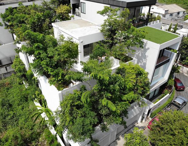 Фото №5 - Экодом в Бангкоке по проекту студии Shma Company