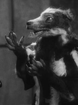 Фото №7 - Что посмотреть: «Франкенвини» и еще 9 крутых черно-белых мультфильмов