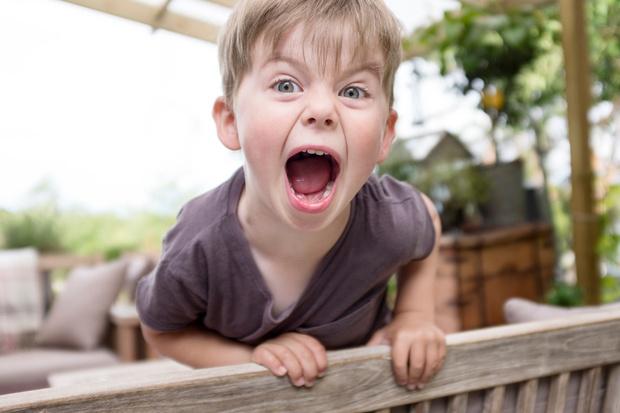 Фото №1 - «Племянник проявляет агрессию»