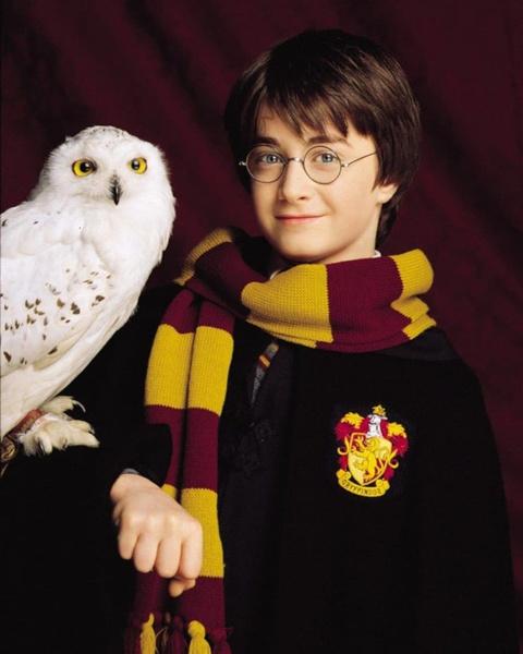 Фото №2 - «Гарри Поттер» и «Мажор»: «Кинопоиск» рассказал о топе фильмов, которые люди смотрели в праздники