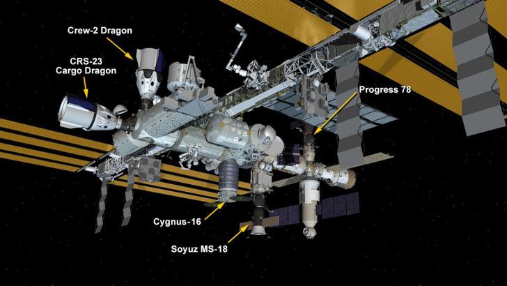 Фото №1 - Грузовой корабль Dragon пристыковался к МКС