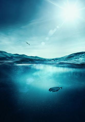 Фото №1 - К чему снится вода: что говорят сонники и психологи
