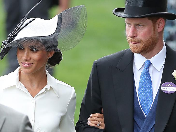 Фото №3 - Почему титулы Арчи и Лилибет Сассекских зависят от герцогини Камиллы