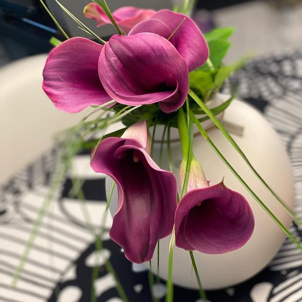 Фото №4 - Лучшие цветы для осеннего букета