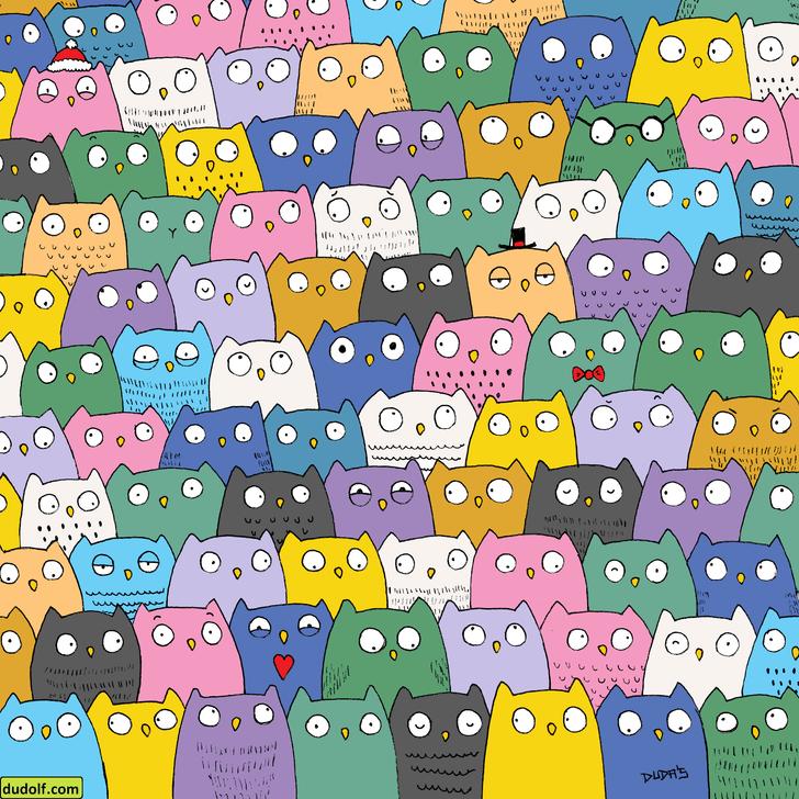 Фото №1 - Загадка на зоркость: найди кота на картинке