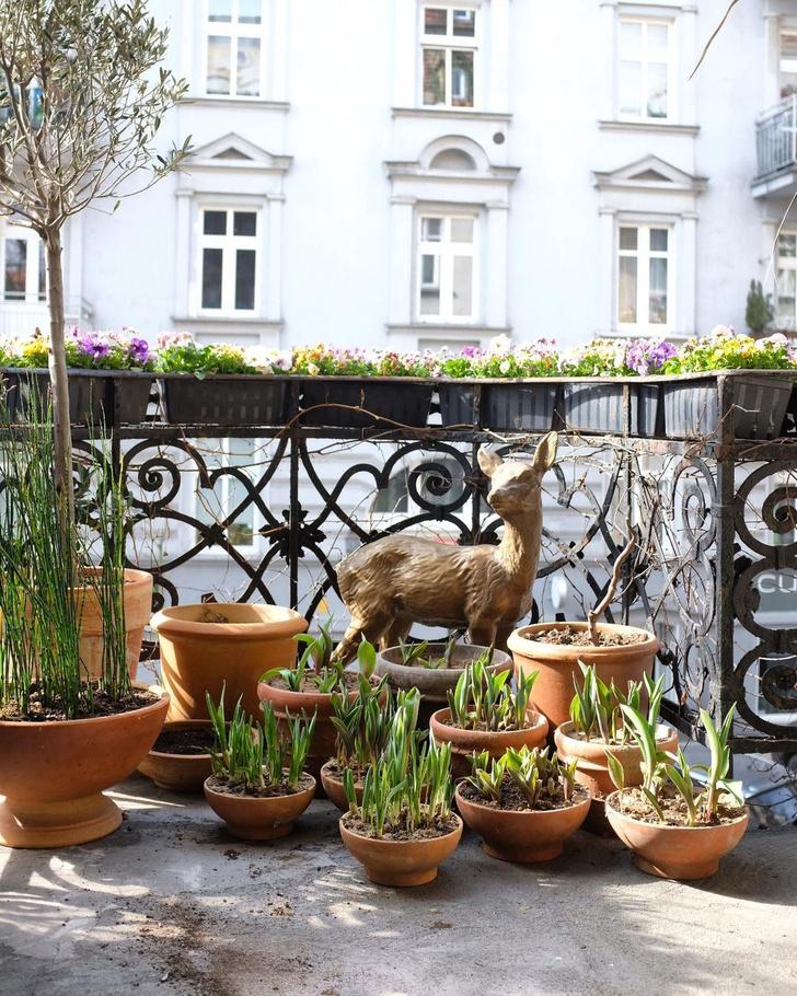Фото №11 - Квартира польских флористов в Познани