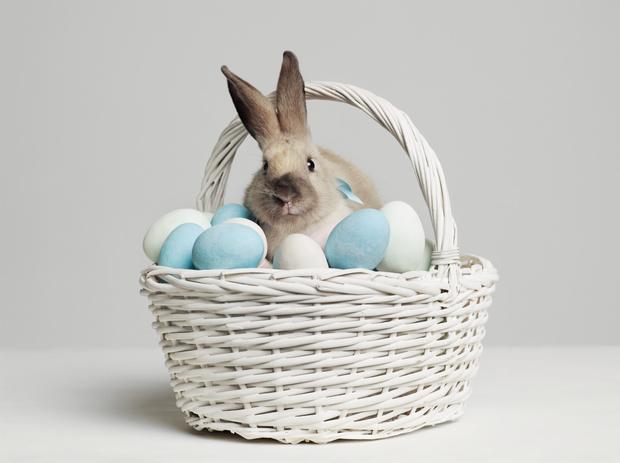Фото №1 - Готовим «драконьи яйца»: оригинальный способ покрасить яйца натурально