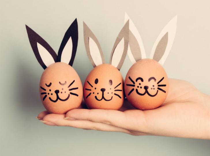 Фото №7 - Что произойдет, если есть по 3 яйца каждый день