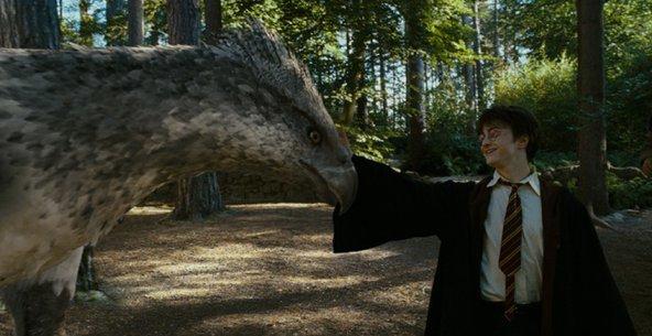 Фото №4 - 15 удивительных фактов о Гриффиндоре, которые знают не все фанаты «Гарри Поттера» 🦁