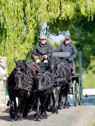 Фото №3 - Королевский досуг: хобби, объединившее графиню Софи и принца Филиппа