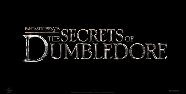 Фото №1 - От любви до ненависти: почему некоторые фанаты против фильма «Фантастические твари: Тайны Дамблдора»? 😱