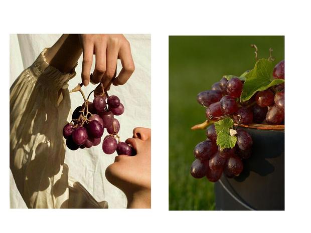 Фото №1 - Виноградные косточки: польза или вред