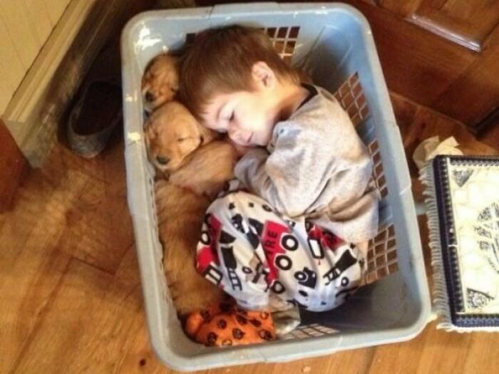 Фото №1 - Что будет, если оставить малыша наедине с питомцем: 35 уморительных фото
