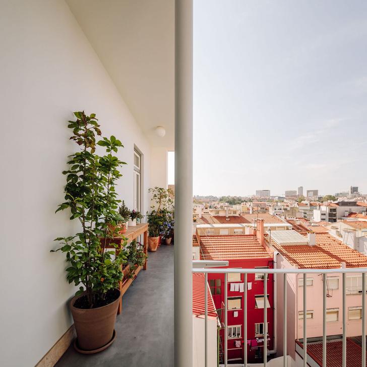 Фото №8 - Дом в Лиссабоне в бежевых тонах