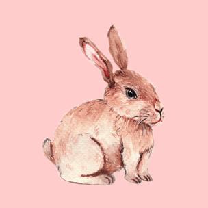Фото №1 - Гадание на зайчиках: какого числа ты встретишь свою любовь? 🐰