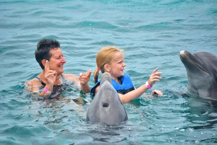 Фото №1 - Доктор дельфин: как и от чего животные лечат детей