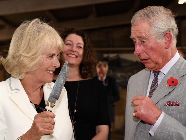 Фото №1 - Нападение на принца: забавное фото с Камиллой, «угрожающей» Чарльзу, стало вирусным