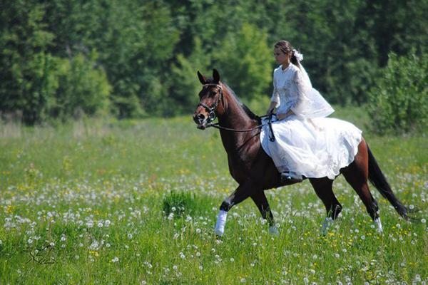 Фото №23 - Девушки на коне: самые романтичные наездницы Ульяновска