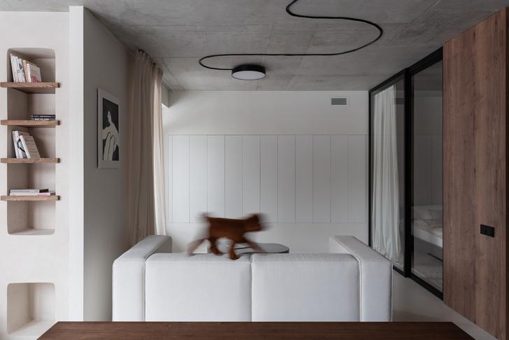 Фото №2 - Белая студия со спальней в алькове