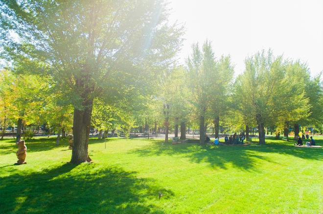 Фото №33 - 10 мест в Астрахани, где осенью – настоящая сказка!