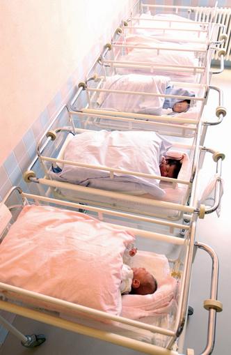 Фото №2 - Многоплодная беременность