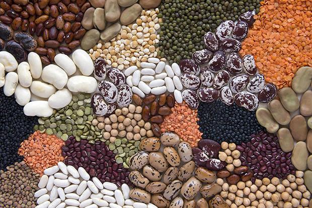 Фото №8 - 8 лучших продуктов питания для зимнего сезона