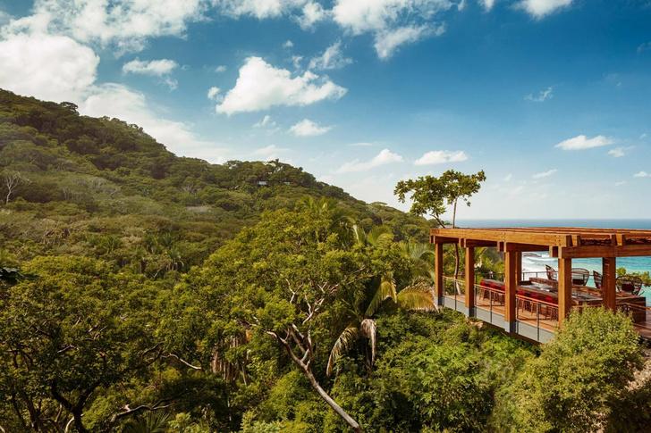 Фото №12 - Отель в тропическом лесу в Мексике