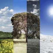 Весна, лето, осень или зима — какой у вас темперамент?
