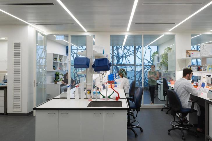 Фото №5 - Центр исследования мозга в Израиле по проекту Foster + Partners