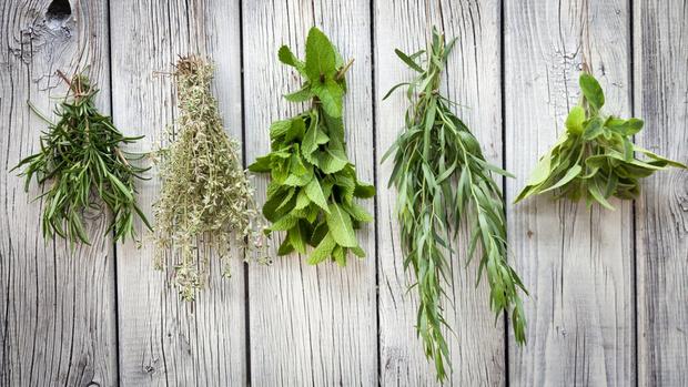лечебные травы для детей