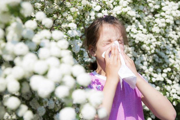 Фото №4 - Чем лечить кашель у ребенка: «народными» средствами или аптечными препаратами?