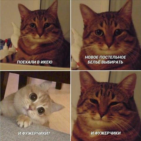 Фото №18 - 10 интернет-мемов, которые популярны только в России