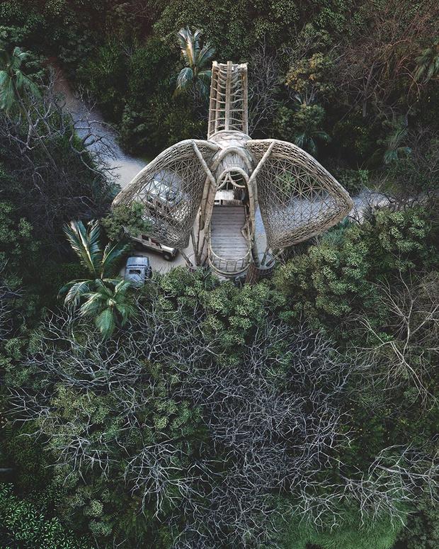 Фото №5 - Смотровая площадка в форме слона на Шри-Ланке