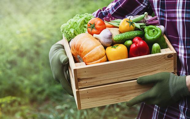 самые эффективные продукты для похудения в талии