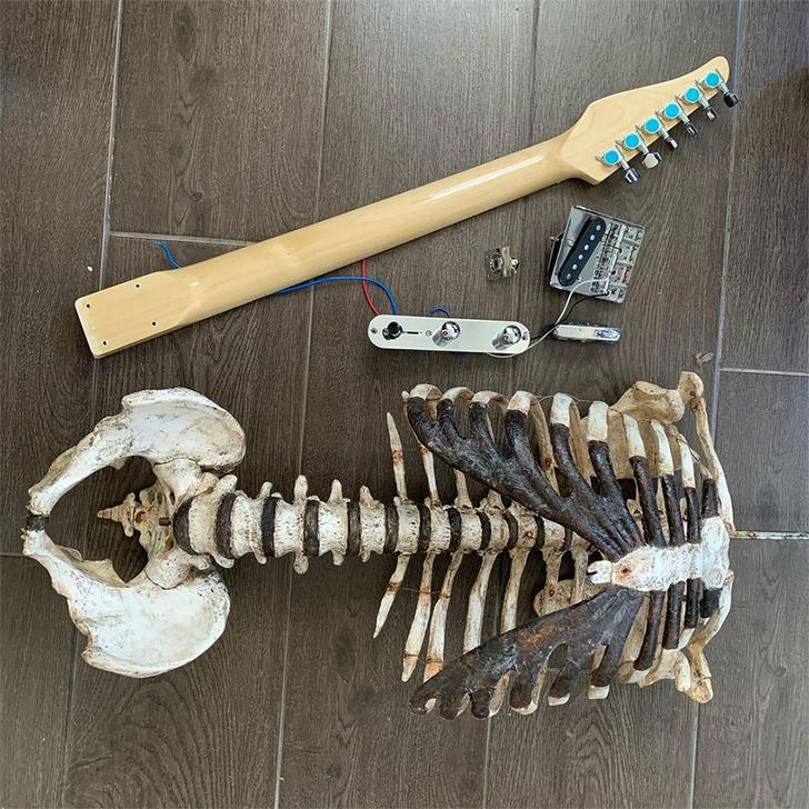 Фото №2 - Музыкант сделал гитару из костей своего дядюшки