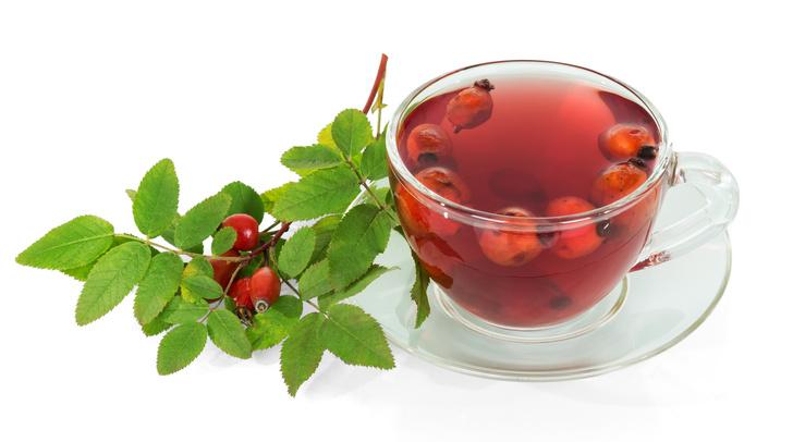 Фото №1 - Шиповник: полезные рецепты отваров и чаев