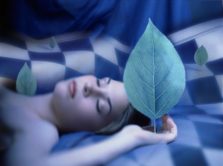 Фото №3 - Ловец снов: как научиться видеть и понимать вещие сновидения